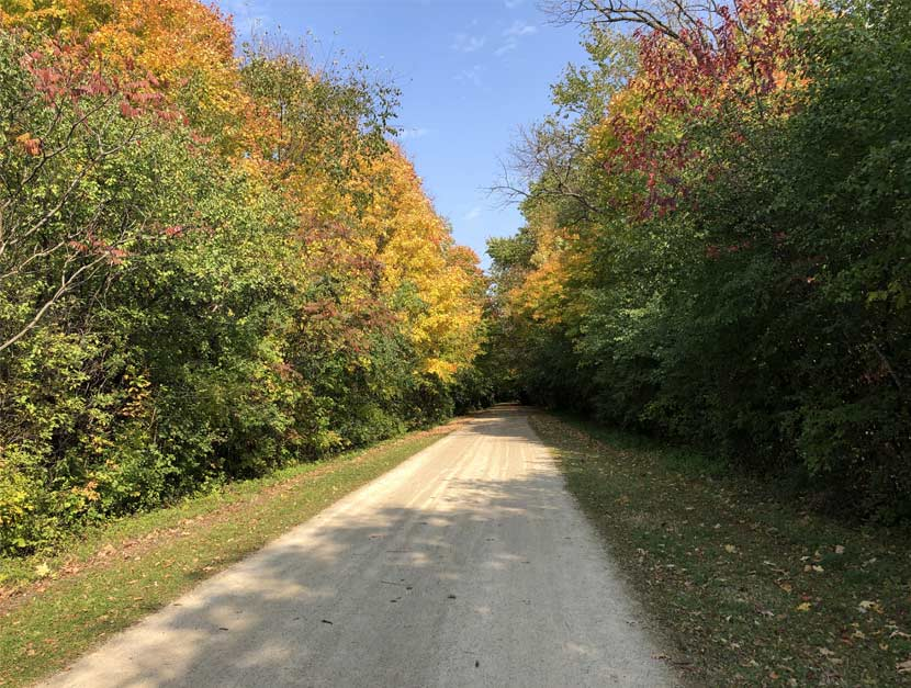 Fall colors burst along the edges of a dirt bike trail.
