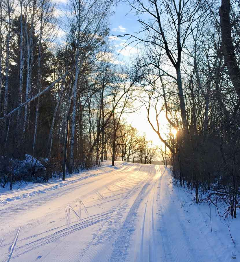 A cross-country ski trail on a sunny day.