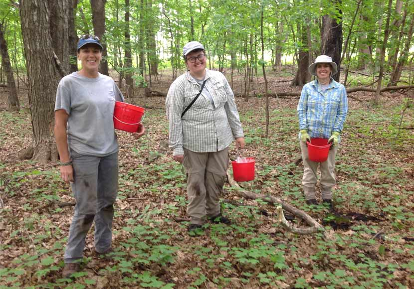 Three people stand in a forest holding red buckets of flower seeds.