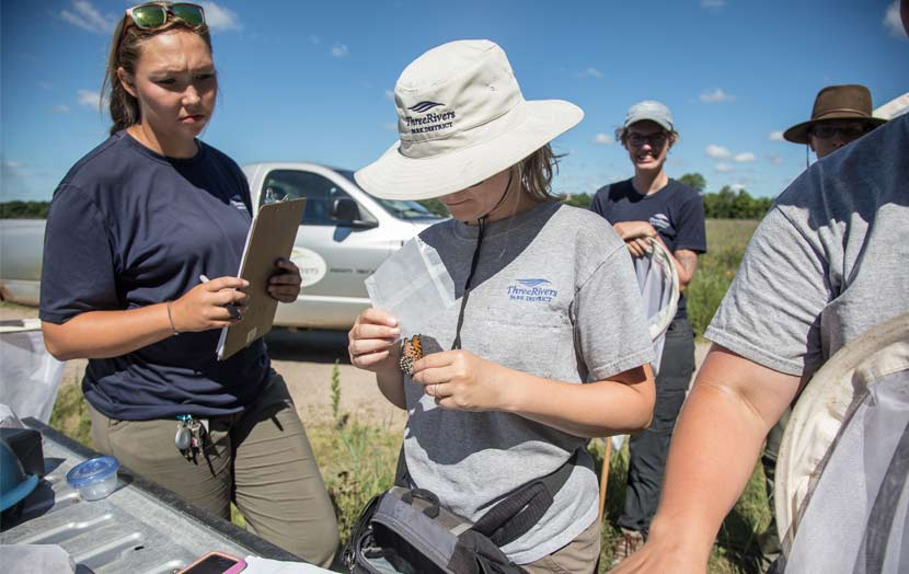 Park district employees stand around a table to record butterfly survey information.
