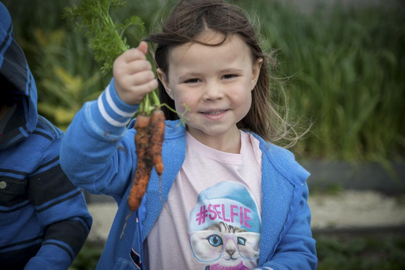 Girl with fresh picked carrots