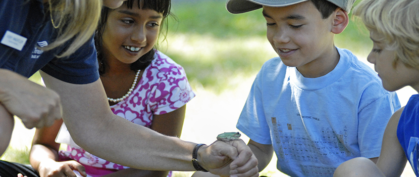 Kids look closely at a frog