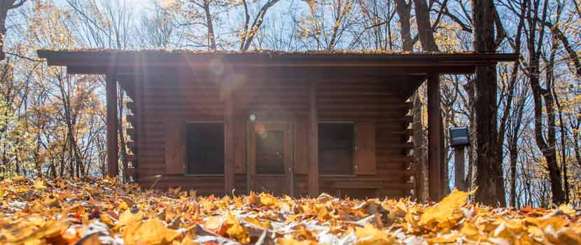 cabin in the woods with fall leaves around it