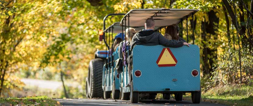 blue tram on a fall colors trail