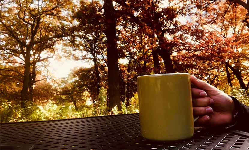 coffee mug outside in the fall at silverwood