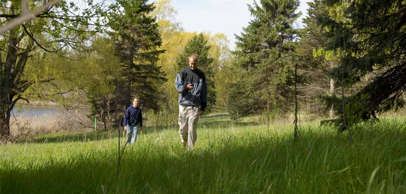 Two men hike through a grassy area looking for a geocache.