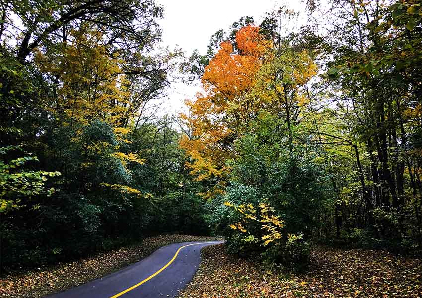 A paved trail cuts through trees that are changing red and yellow in fall.