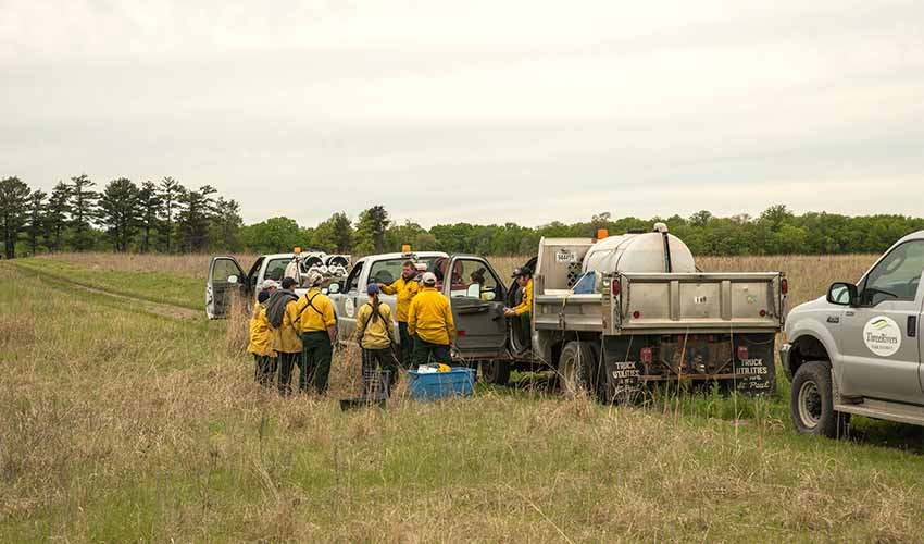 prescribed burn crew of 10 people and trucks in the prairie