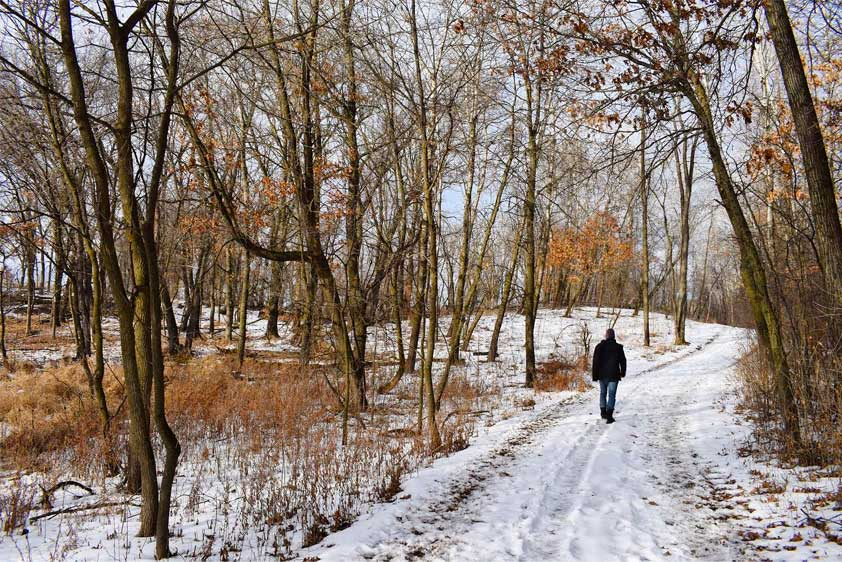 A man walks down a wooded trail at Murphy-Hanrehan Park Reserve in the winter.
